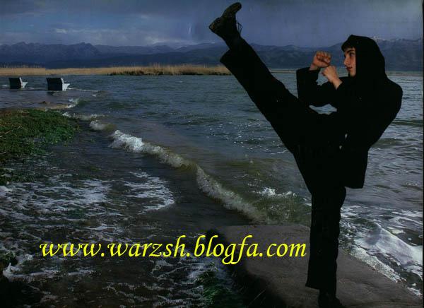 http://havre.persiangig.com/warzshi/nosaebeh.jpg